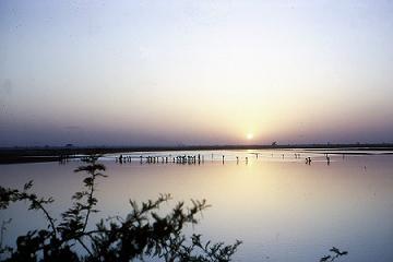 coucher de soleil sur le Logone en saison sèche