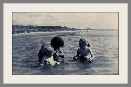 bain dans la Mer du Nord
